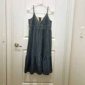 Ivy Jane blue jean dress